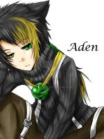 +Aden-close up-+ by Evil-usagi