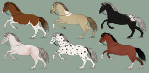 Natural Mystery Horse Adopts by StarlitStables