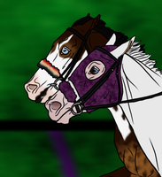 Ghost and 'Merica 2015 WBS Quality In Color Show by angry-horse-for-life