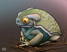 Waxy Monkey Tree Frog by Bubasti333