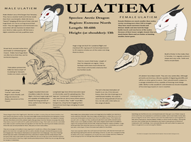 Ulatiem Reference Sheet by MarySeif