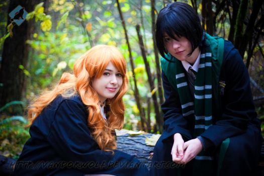 Harry Potter: Lily and Snape by VandorWolf