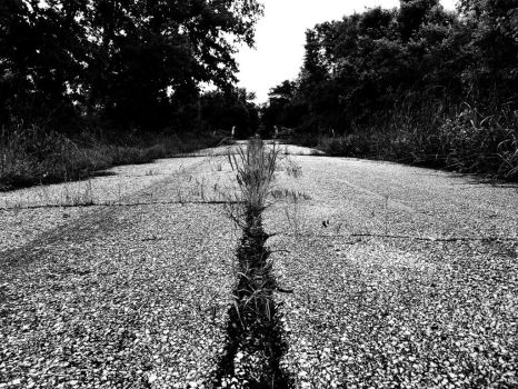 Road To Nowhere by darkcravings23