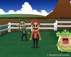 Mario Bros at My Pokemon Ranch by Darkechoes247