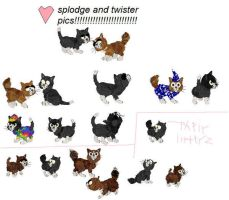 twister and splodge pics by Petz-Central