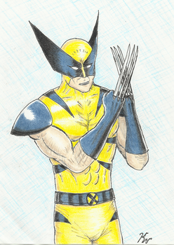 Wolverine showing off the claws by Palyansquest