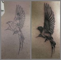 Schwalbe cover up by Silk86
