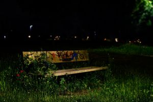 Green Bench by Mood-y