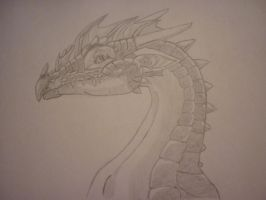 Dragon Head 2 by Irime-Laivine