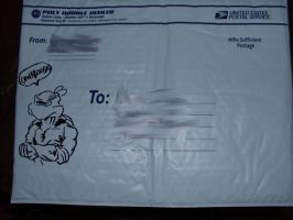 TMNT Envelope Drawing 1 by TMNT1984