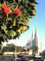 San Diego LDS Temple. by blindbutblink
