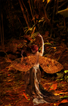 Autumn Fae by FantasyMuse