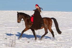 Medieval Woman on Horse Winter Pilgrims I by LuDa-Stock