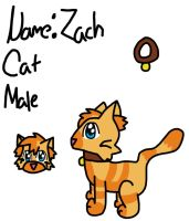Zach ~2013 official reference~ by Riverheart95