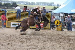 Taupo Rodeo 106 by Sooty-Bunnie