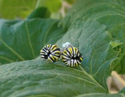 Tiny Monarch Caterpillar Earrings by CaterpillarArts