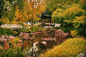 Chinese square by Nattyw