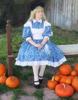 Alice in Wonderland - The Last of Fall by Alicesuu