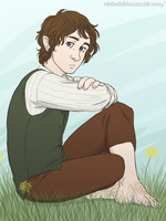 bilbo baggings by Albioncheshire