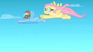 Rainbow Dash trains Fluttershy. by Flutterflyraptor