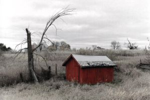 red shed by electricjonny