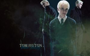 Tom Felton Wallpaper by lieutenantsubtext