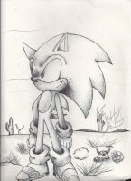 Pen drawing: Sonic the Hedgehog by HypaSonic