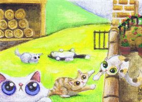 Funny cat farm by KingZoidLord