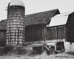 Abandoned Barn by Babybeek