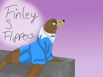 Finley S. Flippers (New OC yey) by TheShadowRabbit