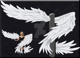 Exclusive Wrapped Wings - White PSD by Thy-Darkest-Hour