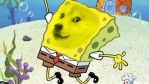 Spongedoge by TheNatsirt
