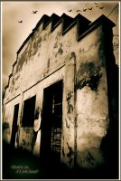 Old house by elthudor