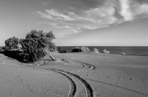 Curved Lines by aptiaa