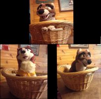 Balto and jenna in a basket by dogmaster22