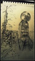 Attack on Titan x Mikasa by Babyface9247
