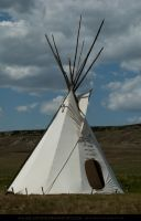 Tipi 1 by SalsolaStock