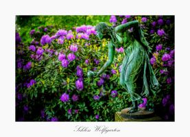 Schloss Wolfsgarten X by calimer00