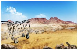 Objects on the loose V - Wild carts by digitalessandra