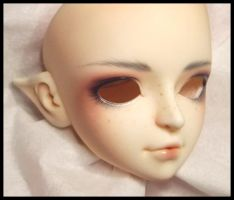 DreamOfDoll Face-Up by Distractus
