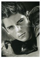 sean faris by jovee