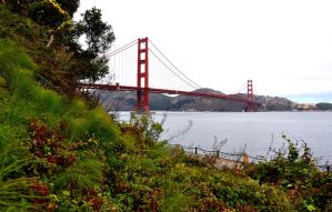 Golden Gate by Zavitala