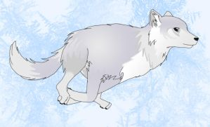 Artic Wolf - Snowpaws by Wulf-Moon