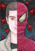 Spider-Man drawing - 2012 by andrecamilo20