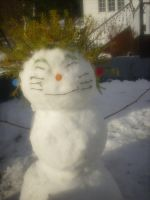 LOL Naruto snowman 8D by Numbuh-9