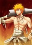 Bleach: Burning Out Ichigo by mazjojo