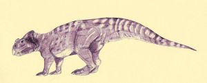 Ajkaceratops by Kahless28
