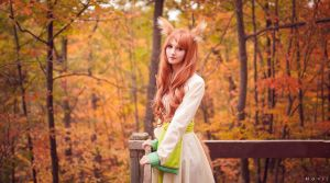 A walk in the woods- Spice and Wolf (2) by kazeplay
