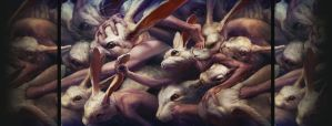 Go forward and forward by Ryohei-Hase
