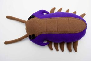 Trilobite in Purple and Olive by Paleogirl